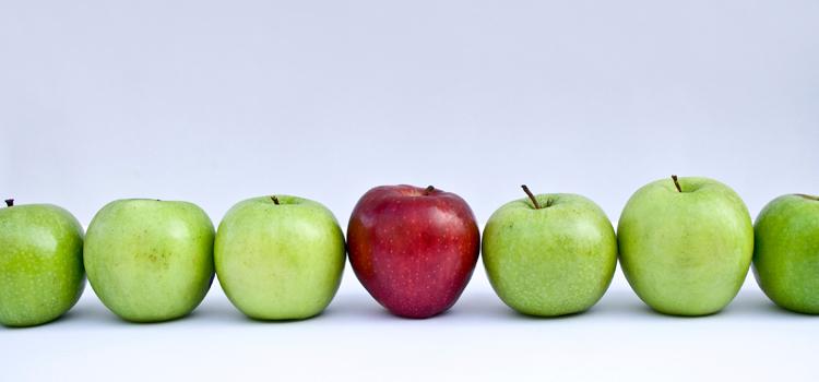 Top Healthiest Employer in Denver