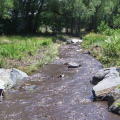 Fountain Creek at Gold Hills Mesa - Colorado Springs, CO